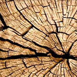 randaline-materiali-legno